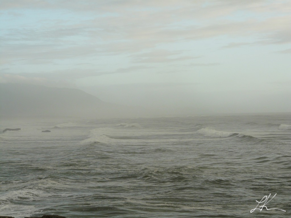 Photo: Tasman Sea on an overcast day.