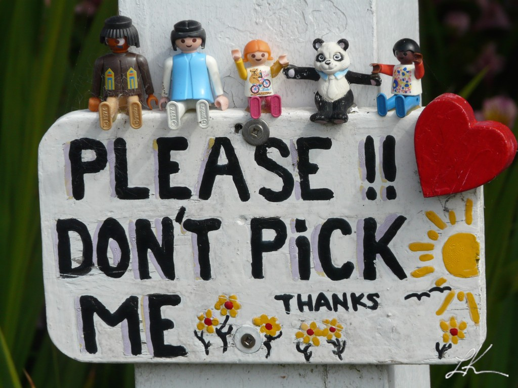 "Photo: Sign that says, ""Please!! Don't Pick Me!"""