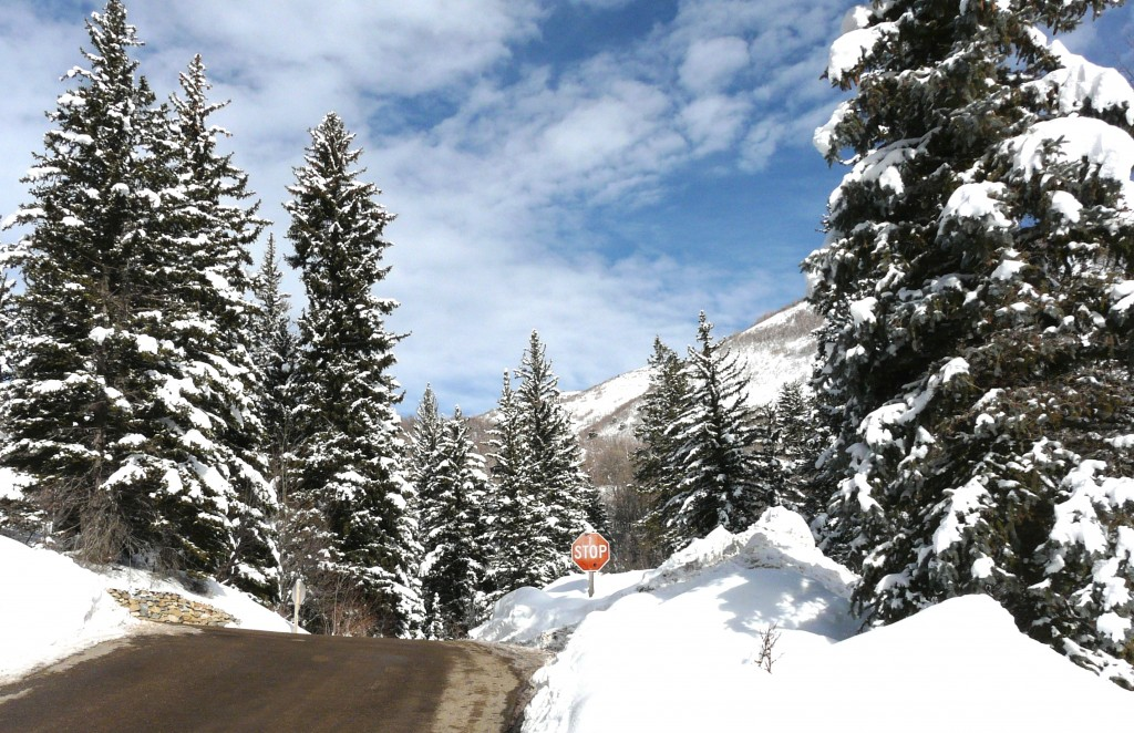 Photo: Winter Landscape of Road with Stop Sign.